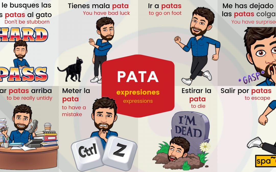 Expresiones con «PATA»